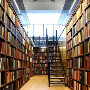 Библиотеки Приютного