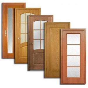 Двери, дверные блоки Приютного