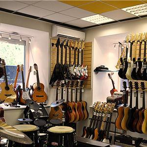 Музыкальные магазины Приютного